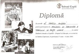 diplome-ddd-6_800x547