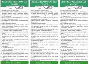 REGULI SI RESPONSABILITATILE ELEVILOR VI B 2012 4