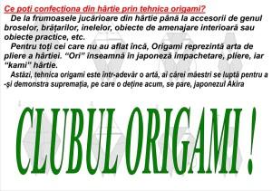 origami-si-diverse_800x565