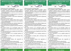 reguli-si-responsabilitatile-elevilor-vi-b-2012-4_800x579