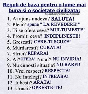 reguli